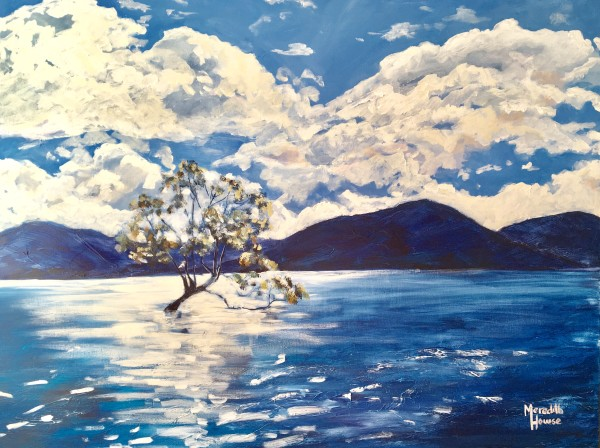 Wanaka Tree by Meredith Howse