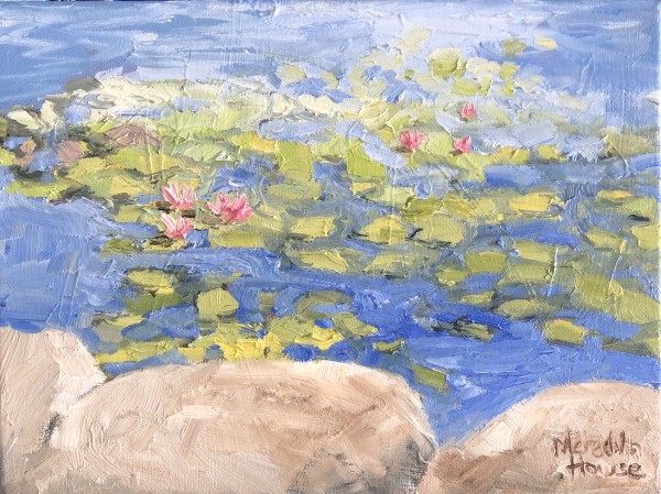 Lambing Flats Pond at Young by Meredith Howse