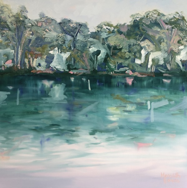 The Daintree River by Meredith Howse