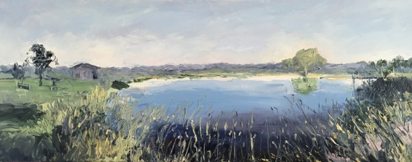 Reflections on Vineyard Dam by Meredith Howse