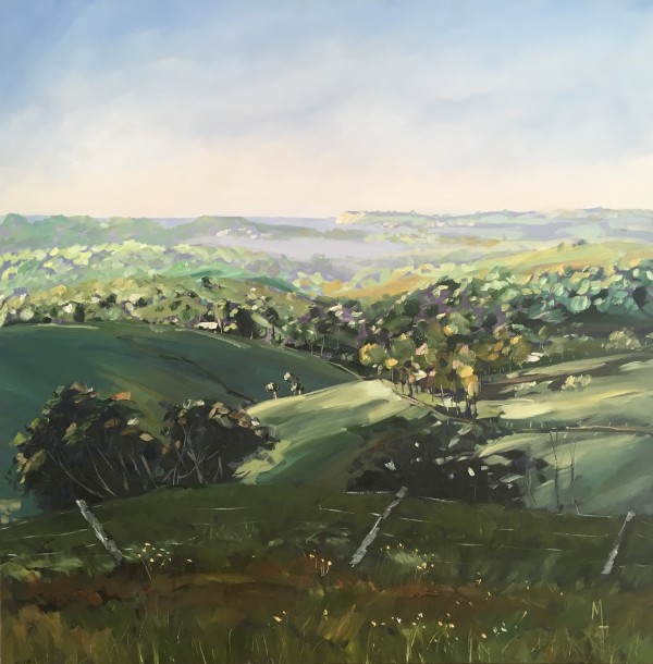 Byron Hinterland - Misty Morning by Meredith Howse