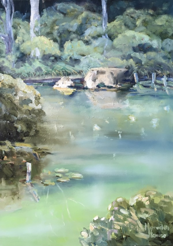 Japanese Garden by Meredith Howse