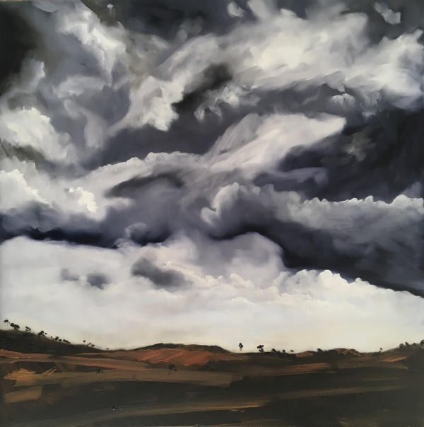 Storm brewing over Muttama by Meredith Howse