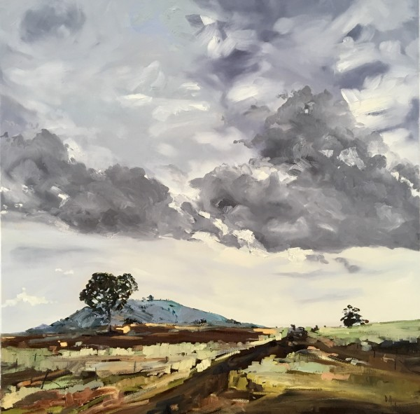 Cootamundra by Meredith Howse