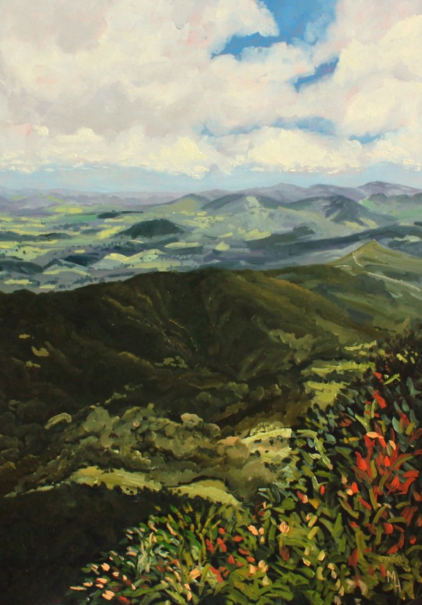 Springbrook by Meredith Howse