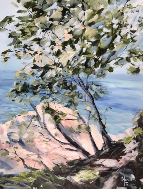 Noosa National Park II by Meredith Howse