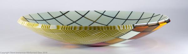 Scrutiny Bowl by Steve Immerman