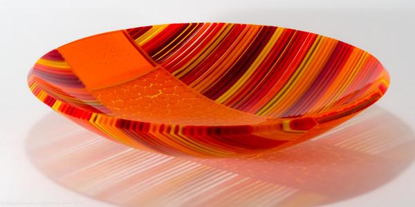 Sunspot IV by Steve Immerman