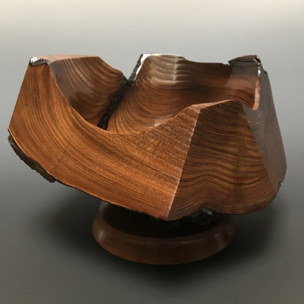 Russian Olive Burl Sculpture by John Andrew