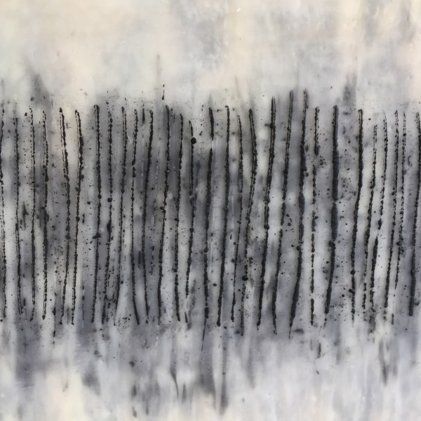 Witness Marks by Joyce Watts Coolidge