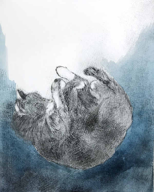 Falling Asleep by Maureen Shaughnessy