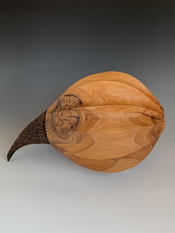 Orb by Boyd Carson