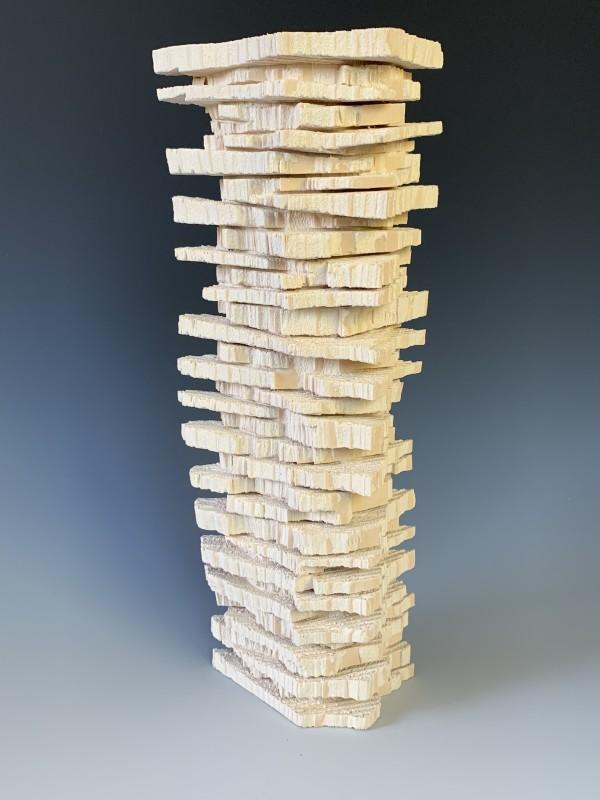 Tower by Boyd Carson