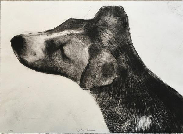 Whose a Good Girl? by Dawn  Endean