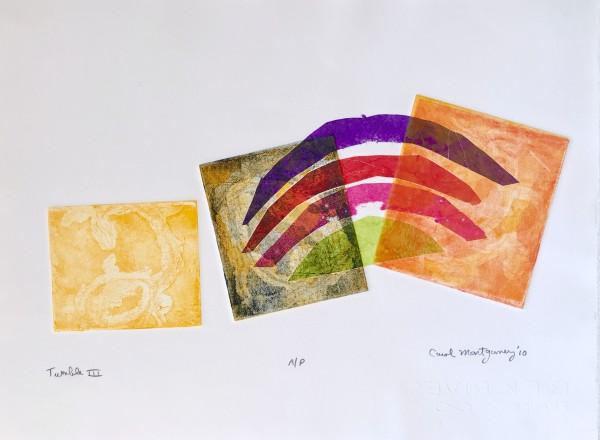 Tumble IV by Carol Montgomery