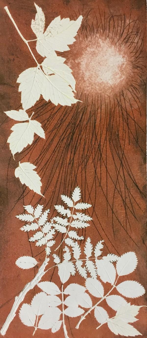 Shibui Autumn by Maureen Shaughnessy