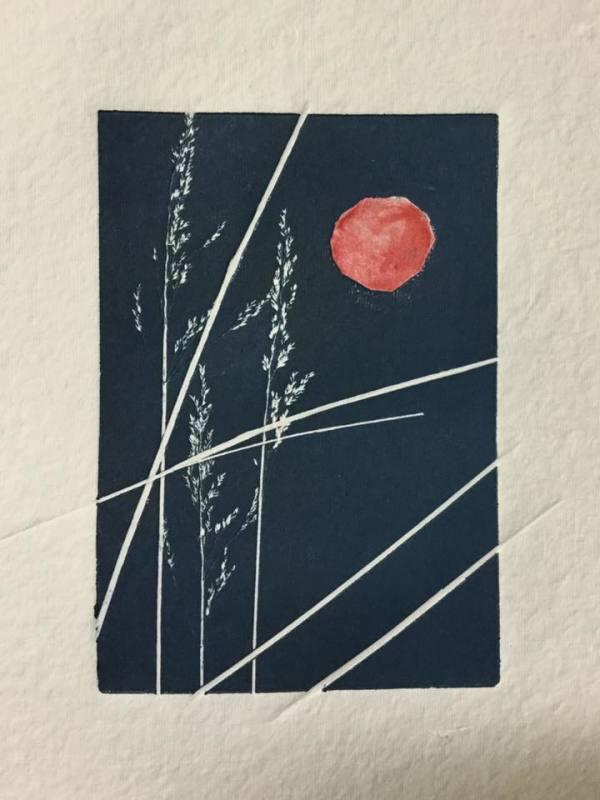 Indigo Moon by Maureen Shaughnessy