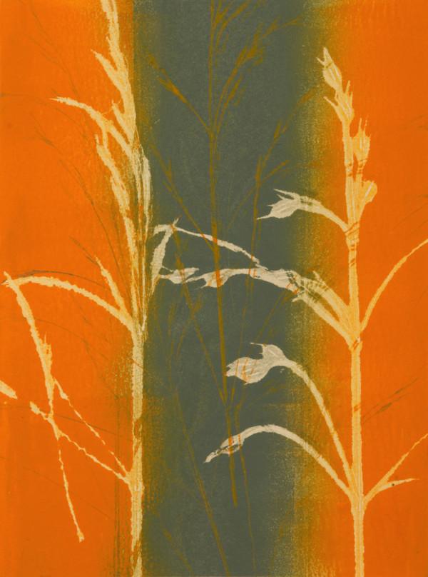 Soft Winter Wheat by Tina Garrick Albro