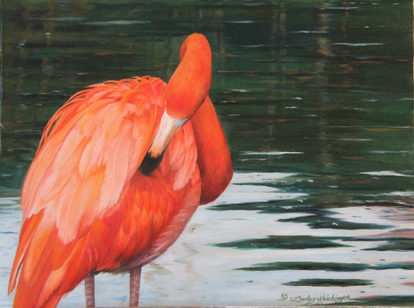 South American Red by Cindy Sorley-Keichinger