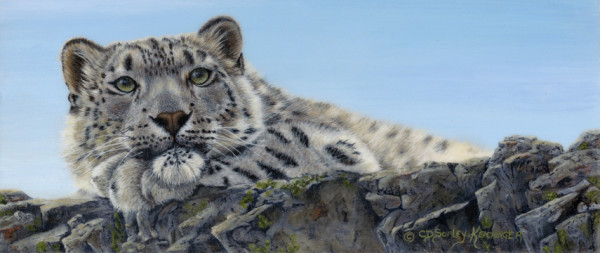 Chillin by Cindy Sorley-Keichinger