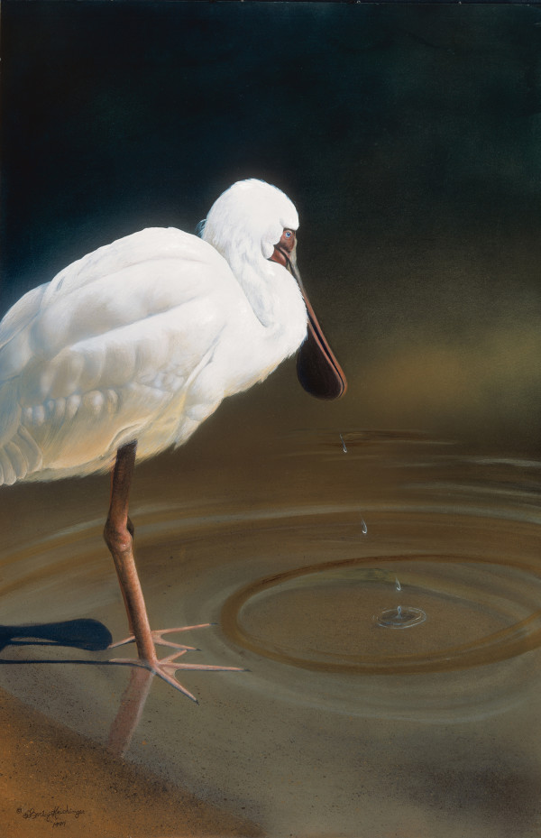 Contemplation by Cindy Sorley-Keichinger