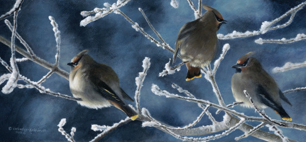 Frosty Morn by Cindy Sorley-Keichinger