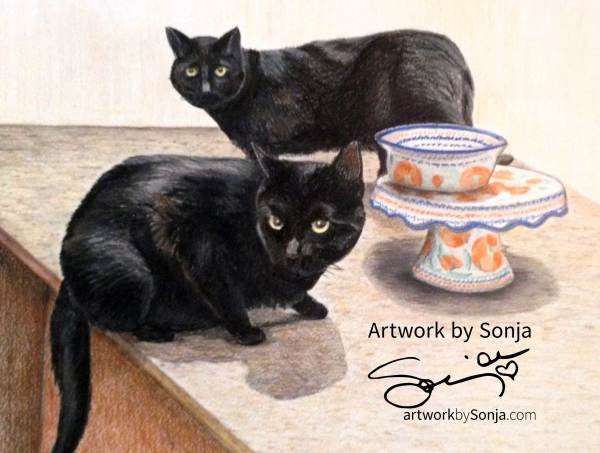 Black Cats Portrait by Sonja Petersen