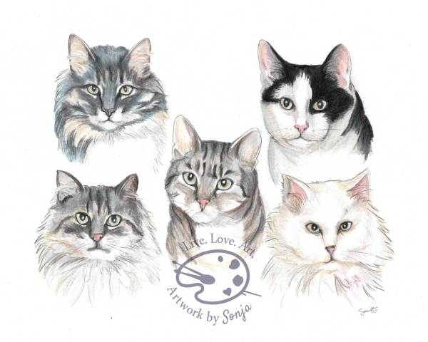 Cat Family Portrait by Sonja Petersen