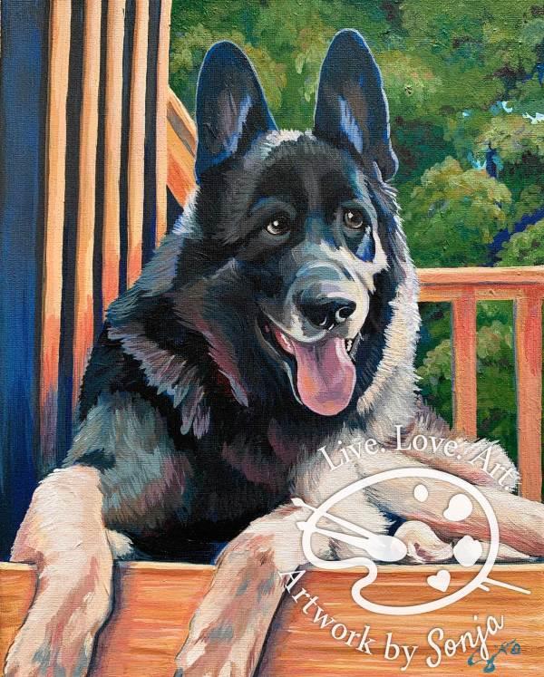 Bethem Pet Portrait by Sonja Petersen