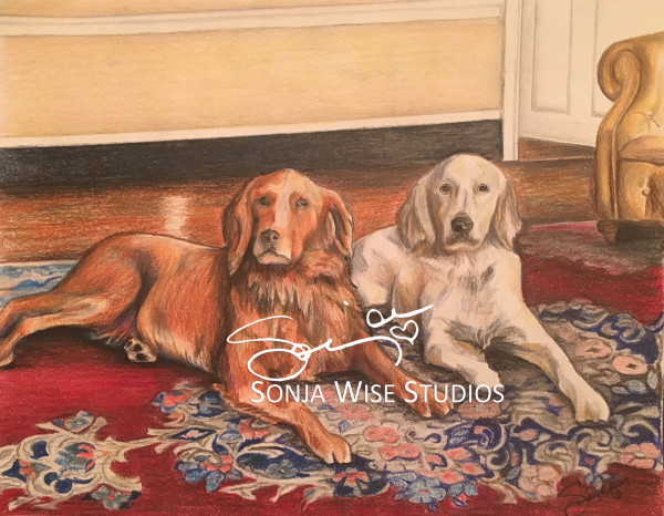 Jackson and Reed Pet Portrait by Sonja Petersen