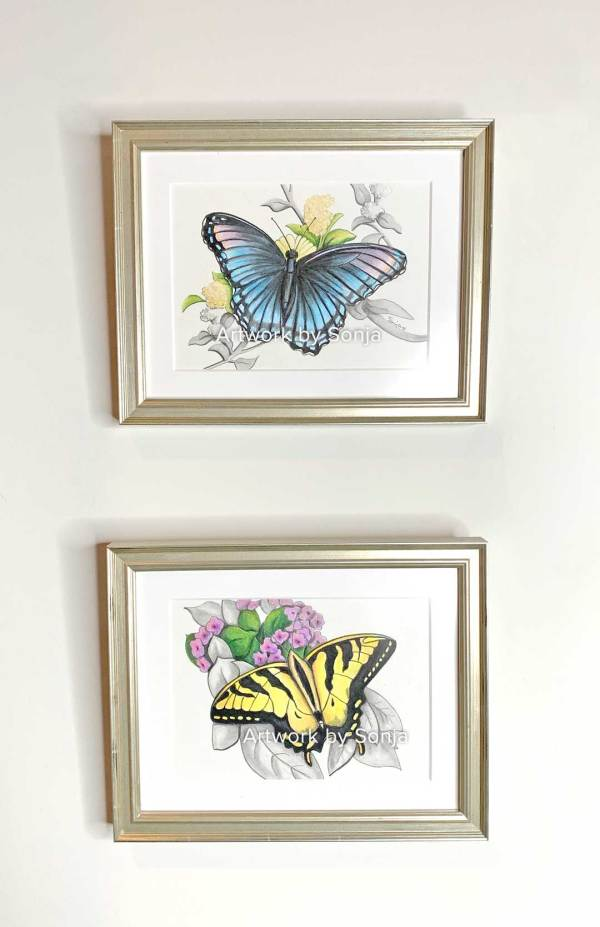 Pair of Butterflies Commissioned by Sonja Petersen