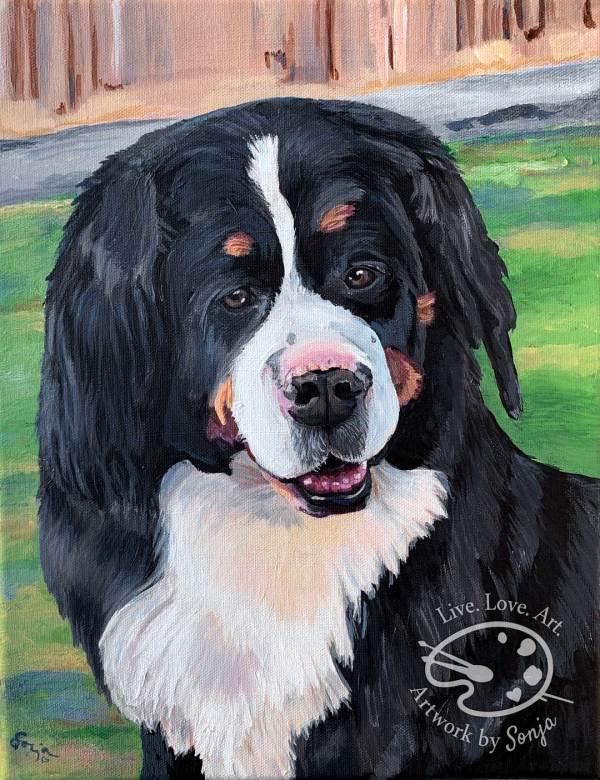 Pyrenees Mountain Dog Portrait by Sonja Petersen