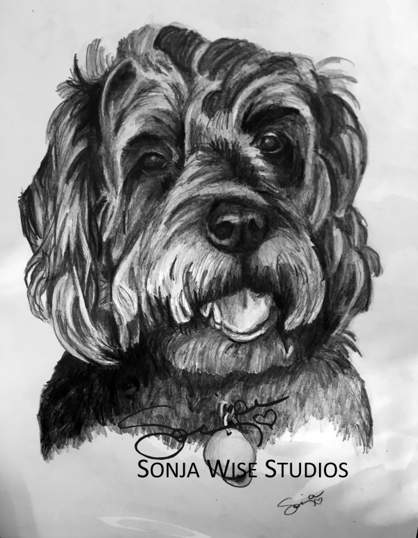 Pet Portrait of Shadow by Sonja Petersen