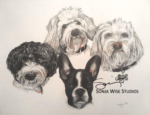 Four Dogs Pet Portrait by Sonja Petersen