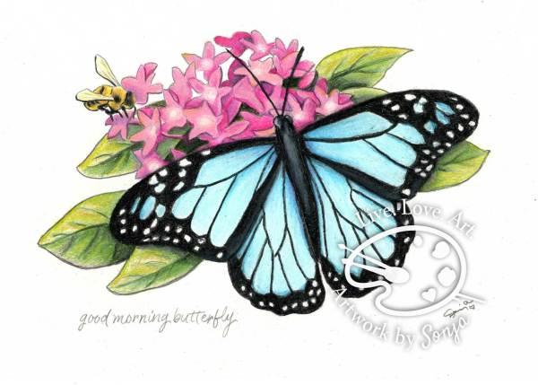 Custom Bee  & Blue Monarch by Sonja Petersen