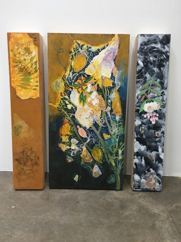 Hiptage Flower by Richard S. Hall