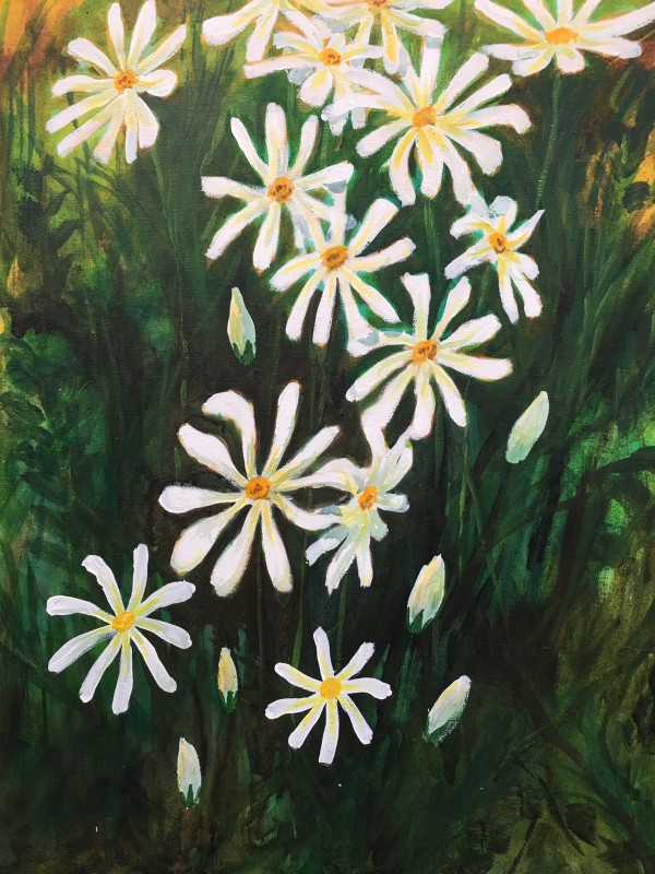 Daisies#3 by Richard S. Hall