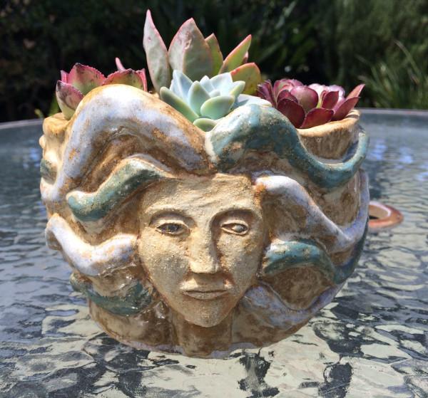Double Medusa succulent pot  by Nell Eakin