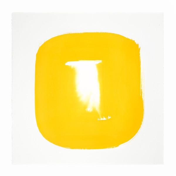 Aperture in Sunshine Yellow III by Veronique Gambier
