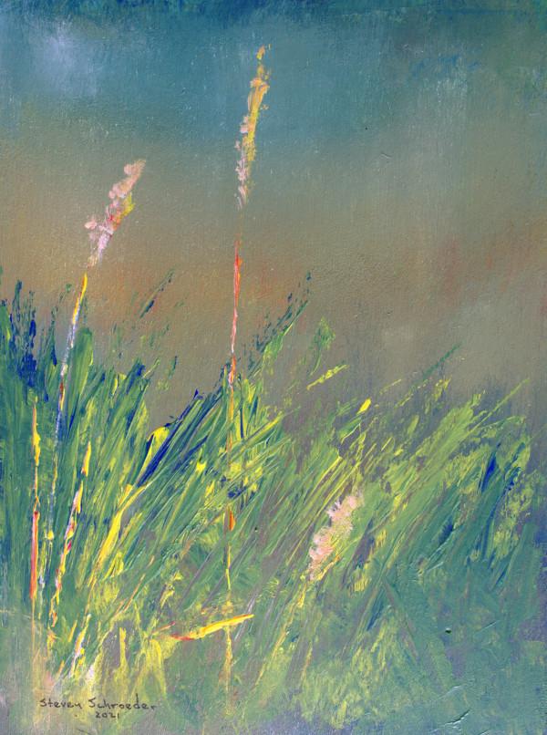 simple as grass 3 by Steven Schroeder