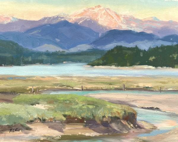 Skokomish River by Nancy Romanovsky
