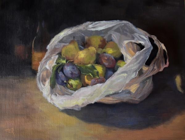 Double Bagged by Nancy Romanovsky