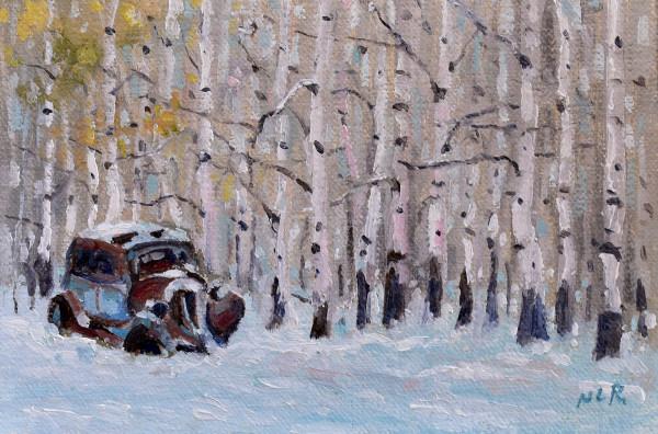 Final Season by Nancy Romanovsky