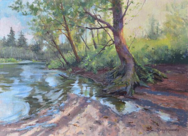 Spring Reflections by Nancy Romanovsky
