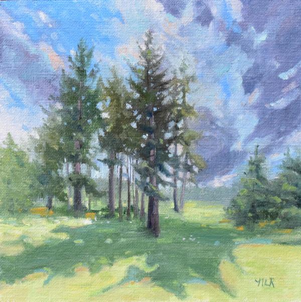 Summer Drama by Nancy Romanovsky