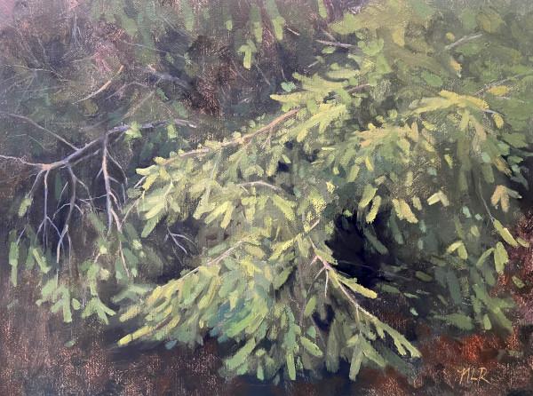 The Branch by Nancy Romanovsky