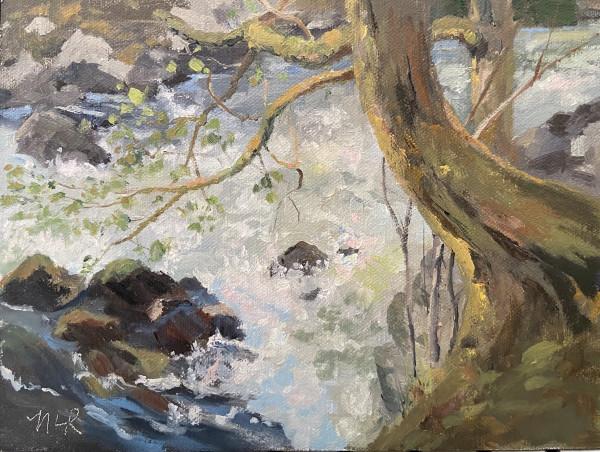 Tumwater Falls Park by Nancy Romanovsky
