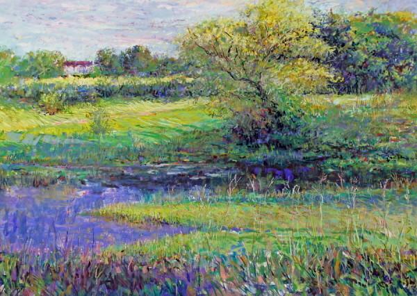 Back Pond by Tom Bailey