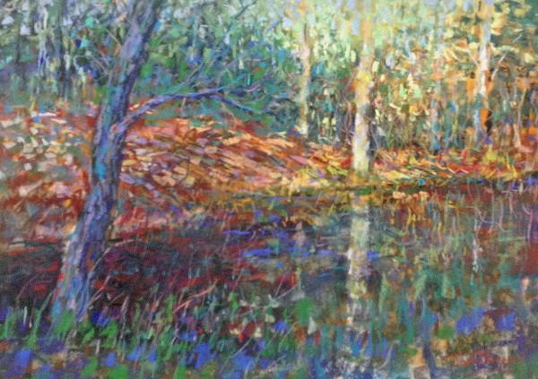 Tree Flow by Tom Bailey