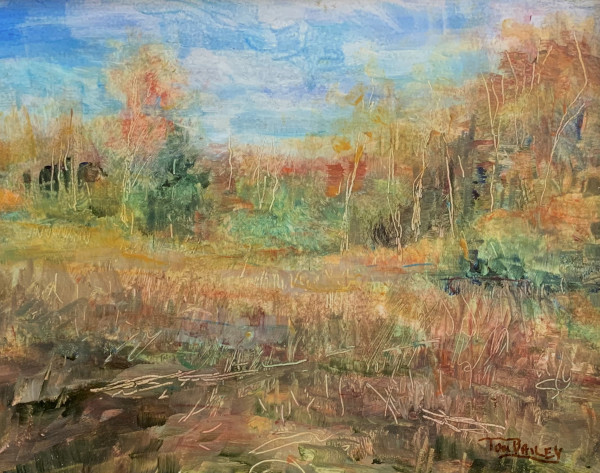 Far Afield by Tom Bailey